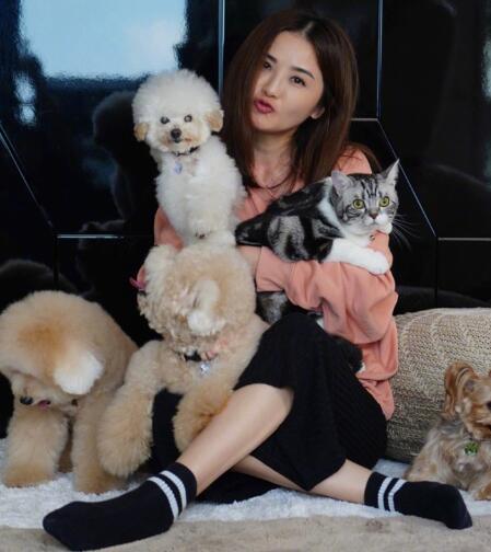 阿Sa蔡卓妍晒为宠物庆生的照片 被猫和狗包围着
