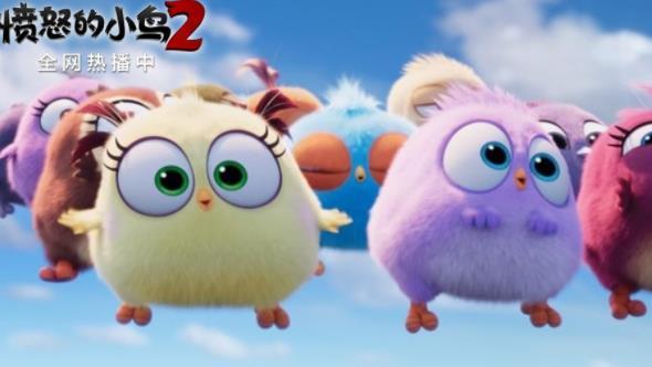 爆笑动画电影《愤怒的小鸟2》 线上人气不减 网络播放量居高不下