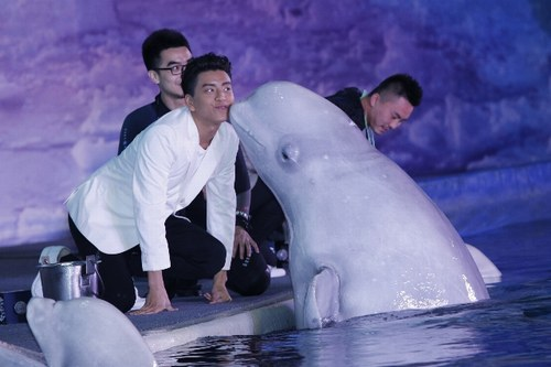 """王大陆遭白鲸""""强吻"""" 被曝与张天爱片场打情骂俏"""
