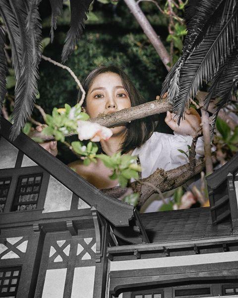 恐怖又迷人!Red Velvet新专辑概念照再获好评