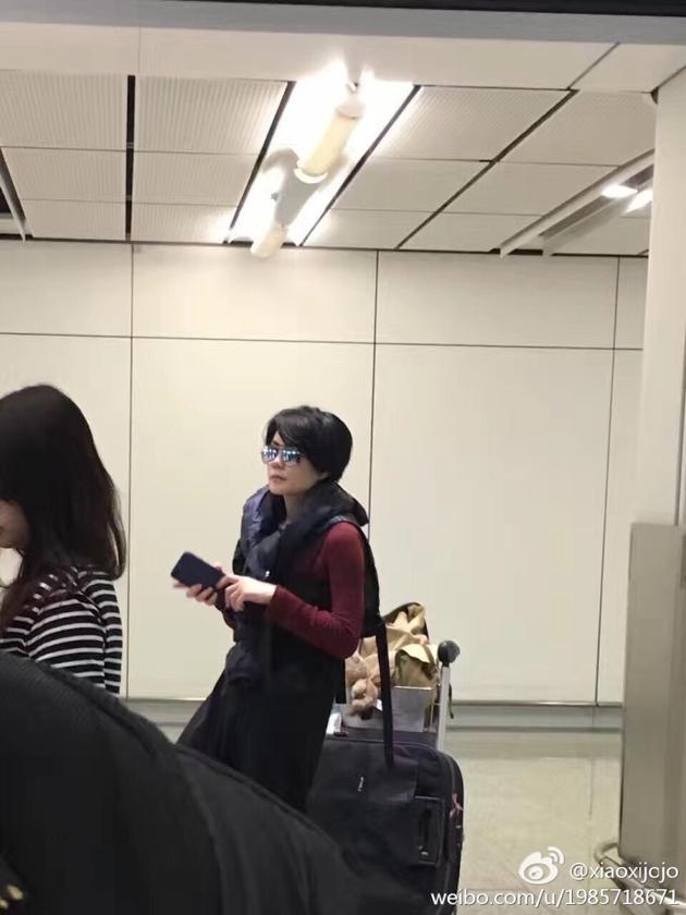 甜!王菲谢霆锋香港撒狗粮 机场亲亲两次