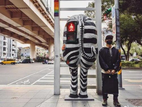 林俊杰与斑马雕塑合影求标题 被侃:热脸与冷屁股