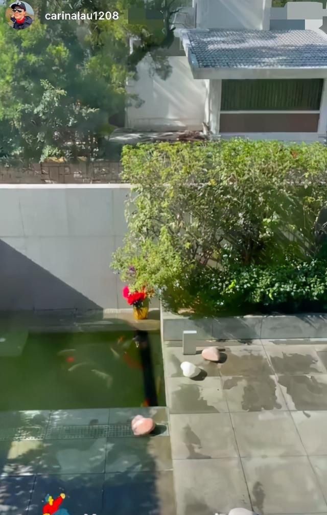 刘嘉玲罕晒香港两亿豪宅 庭院建池塘养锦鲤似园林