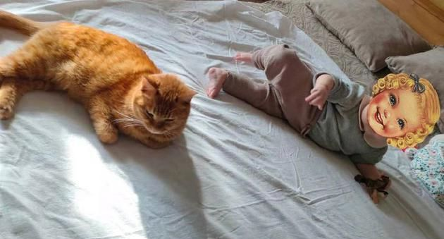 热依扎晒女儿与猫合照 透露宝宝两个月就会说爱