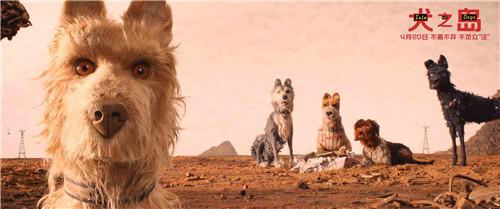 《犬之岛》神秘包裹引发狗狗大战