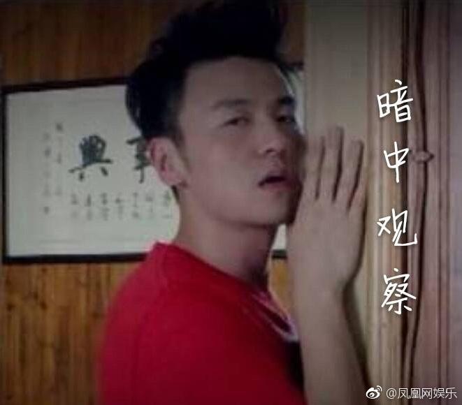 【美天棋牌】雷佳音养食人花 网友:是为了吃脸吗?