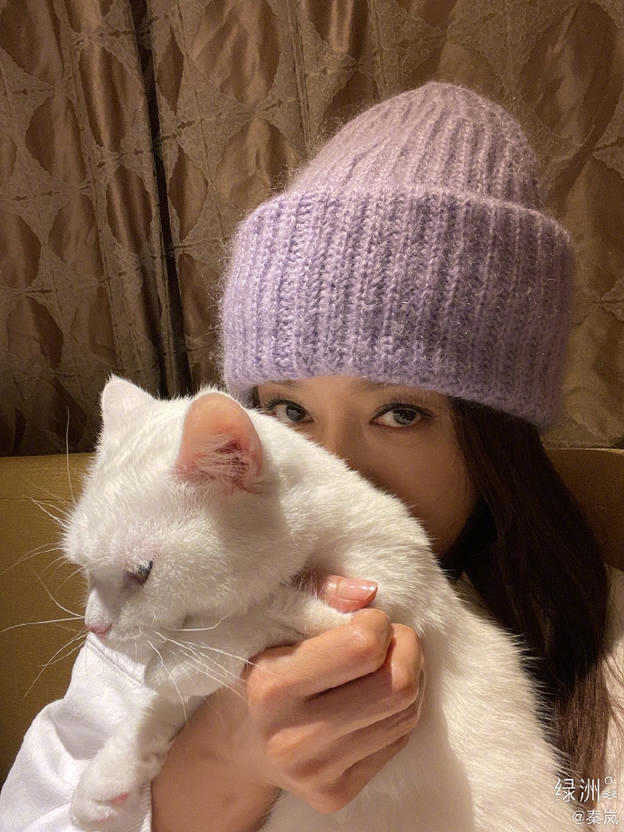 秦岚抱猫咪自拍 戴绒线帽清纯可人很文艺