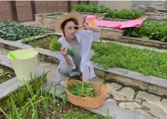 最近,张馨在社交平台上曝光了一组自己农场的照片