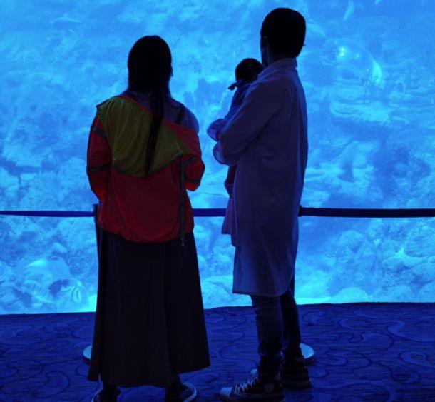 向佐夫妇带女儿现身海洋公园 郭碧婷背影稍显丰腴