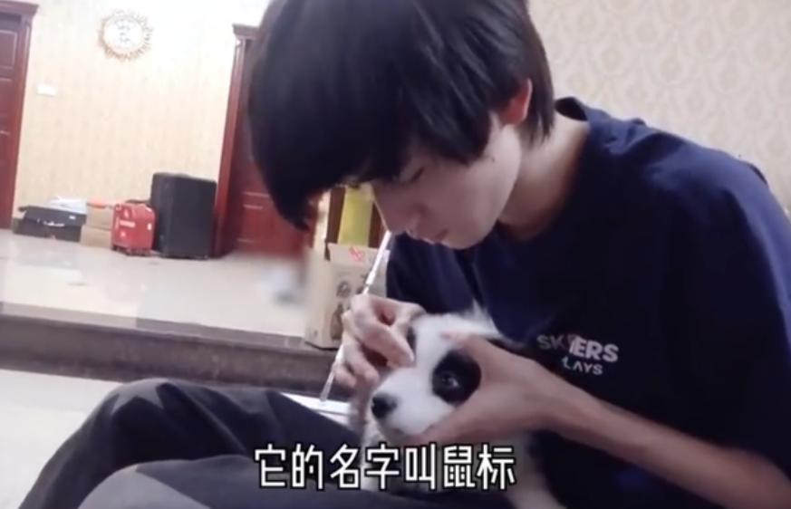 宋亚轩的鼠标几个月大了 他时常会与大家分享宠物的日常