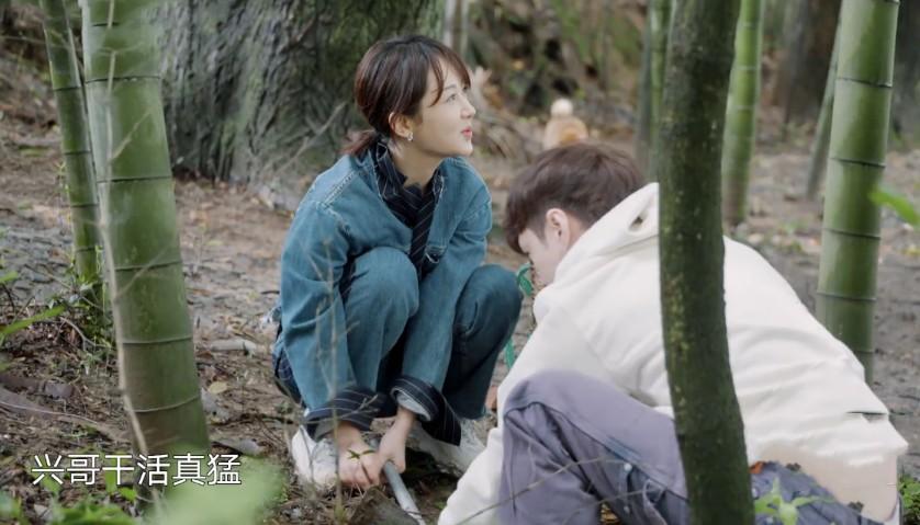 【美天棋牌】杨紫张艺兴挖笋太欢乐 互相斗嘴好像一对热恋中的情侣