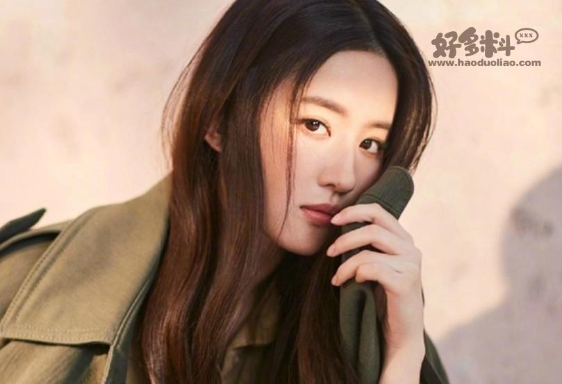 高圆圆和刘亦菲谁更美 两个人不是同一类型的美女