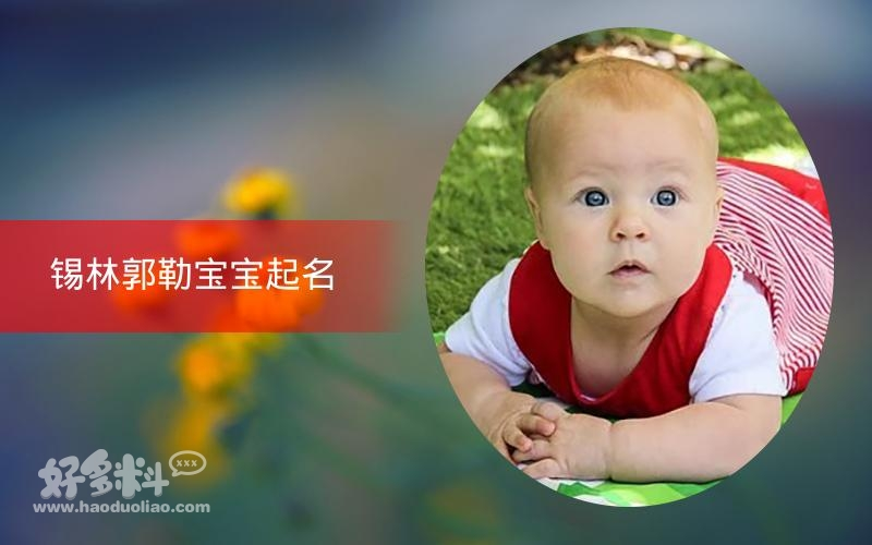 锡林郭勒宝宝起名 19年起名经验 国学起名新势力