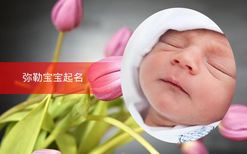【美天棋牌】弥勒宝宝起名 26年起名经验 国学起名新势力