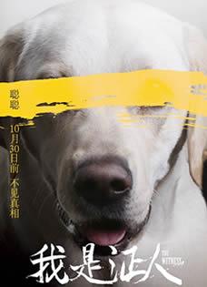 《我是证人》不见真相版海报 杨幂鹿晗针锋相对